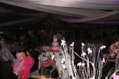 2012-05-03 22.11.35_500x375